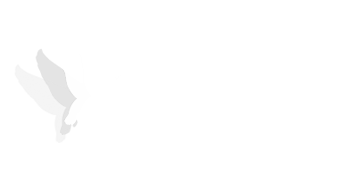 logo partenaire-ceebios