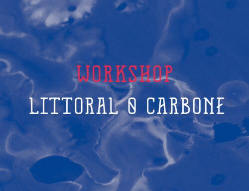 Workshop #10 Littoral 0 Carbone
